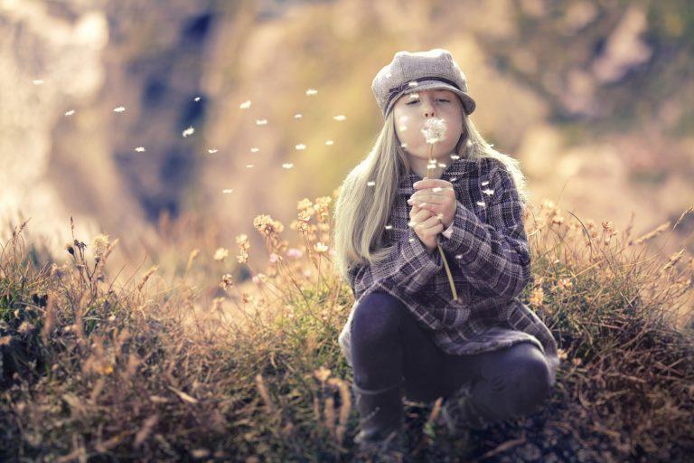 dreamstime_xxl_86248866-min